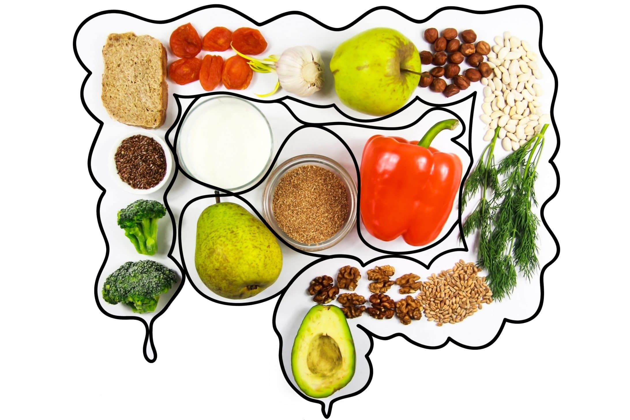 verschiedene Gemüse und Obst aufgereiht in Form eines Darms